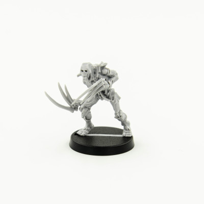 Necron Flayed Ones №1