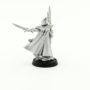 Farseer and warlocks (8)