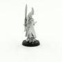 Farseer and warlocks (9)
