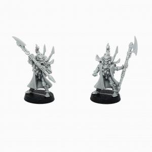 Dark Eldar Bodyguard