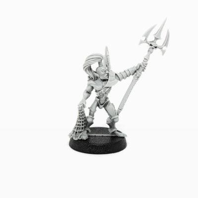Dark Eldar Wyches with Shardnet & Impaler 1,2