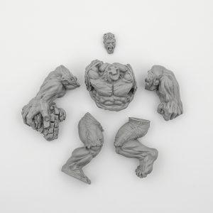 The Incredible Hulk (OOP)