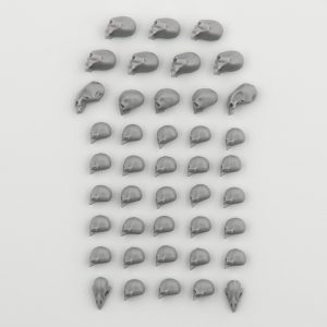 Skulls from Hero Base